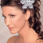 wedding-hair-accesories-trend-2012